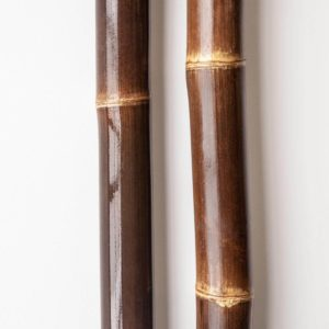 Bambusrohre braun