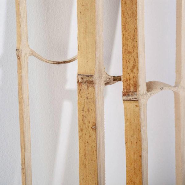 Bambus Skelett Nahaufnahme Wooden Globe